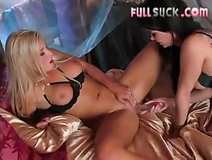 Picture The Horny Models