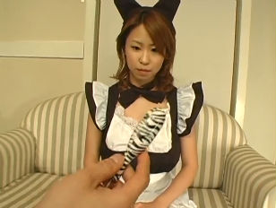 Hairy cat maid koharu