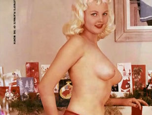 Picture 60s Playmate