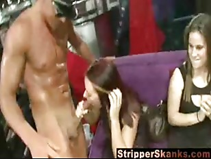 Picture Nasty Stripper Loving Sluts Sucking Cock