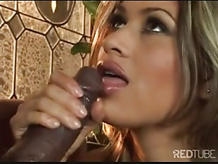 Picture Mr Marcus Destroying Adult bitch Paula